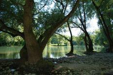 Limmat Wasserschloss6